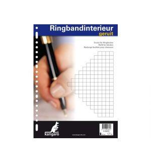Ringbandinterieur Kangaro 23R Ruit 10Mm 100 Vel