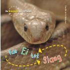 De Kringloop van het Leven - Van ei tot slang